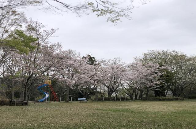 羽黒山公園(茨城県行方市)