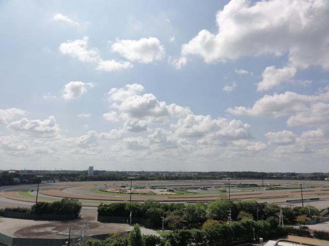 JRA(日本中央競馬会)美浦トレーニングセンター広報会館