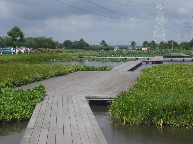 利根親水公園