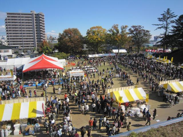 宇都宮餃子祭り2012
