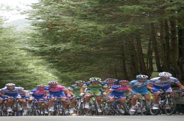 2017ジャパンカップサイクルロードレース