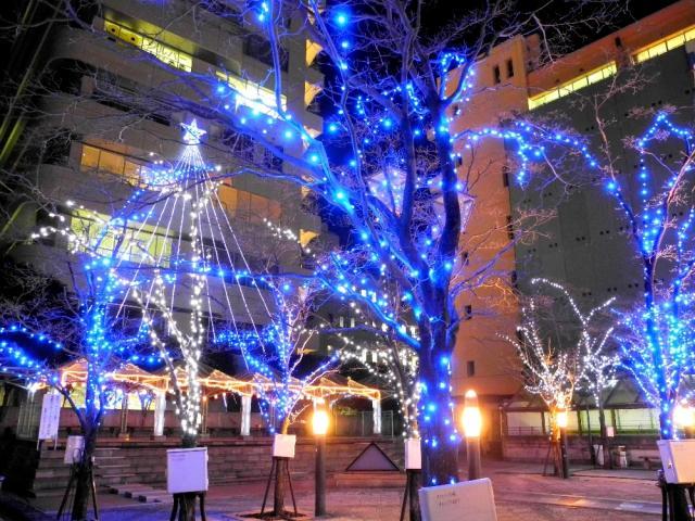 宇都宮彩燈2016