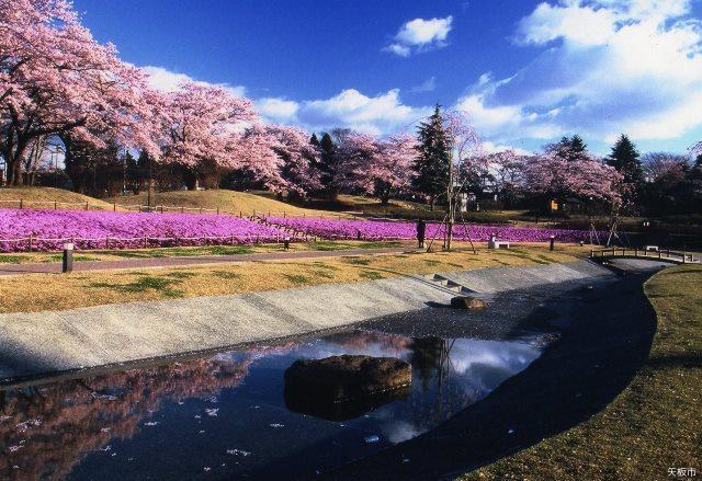 Nagamine Park★S0101