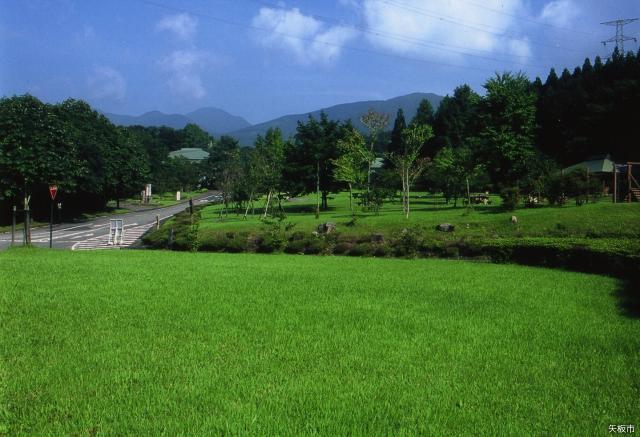 栃木県県民の森