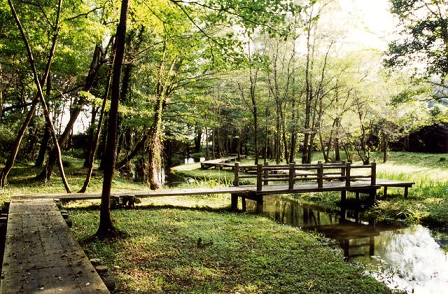 磯川緑地公園