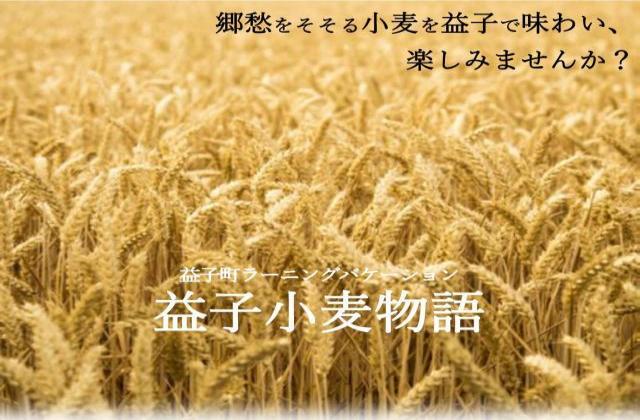 益子小麦物語 2020