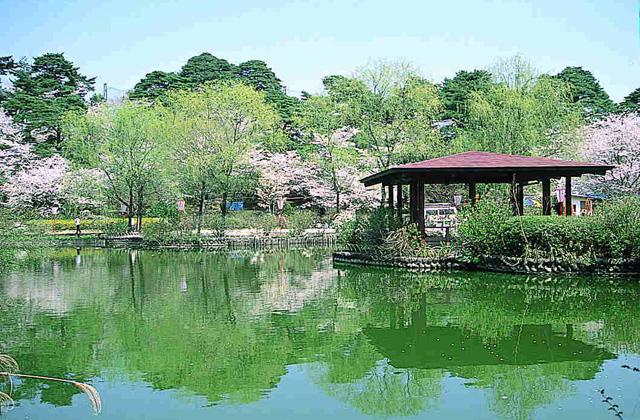烏が森公園