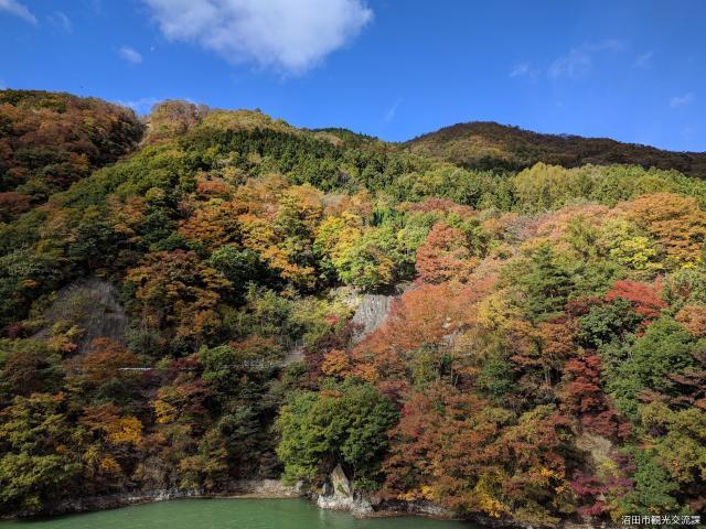 薗原湖の紅葉