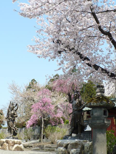 真光寺庭園