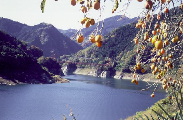 神流湖(群馬県藤岡市)