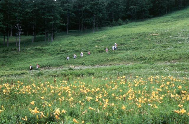 高峰高原(群馬県嬬恋村)
