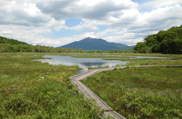 尾瀬国立公園ハイキングコース
