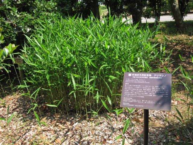 群馬県緑化センター
