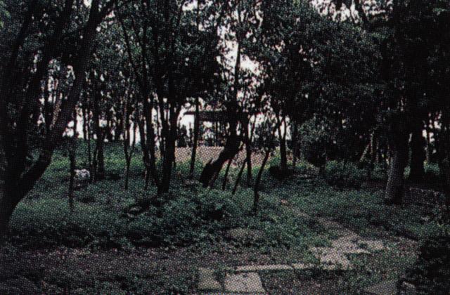 斉藤与里記念公園