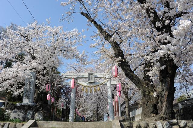 城山五谷神神社例大祭