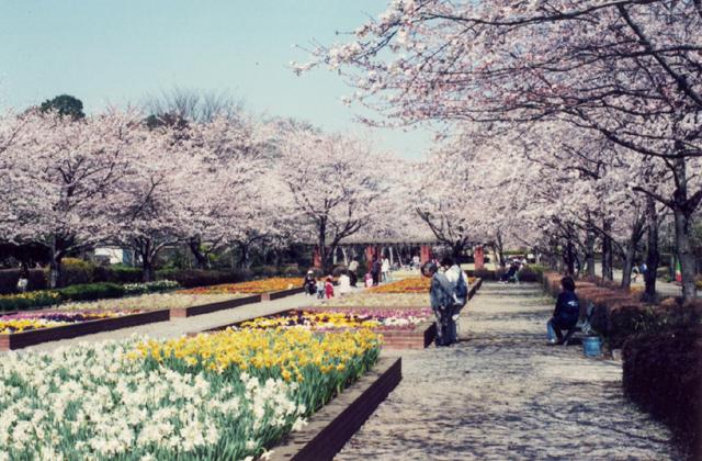 城山公園(埼玉県桶川市)