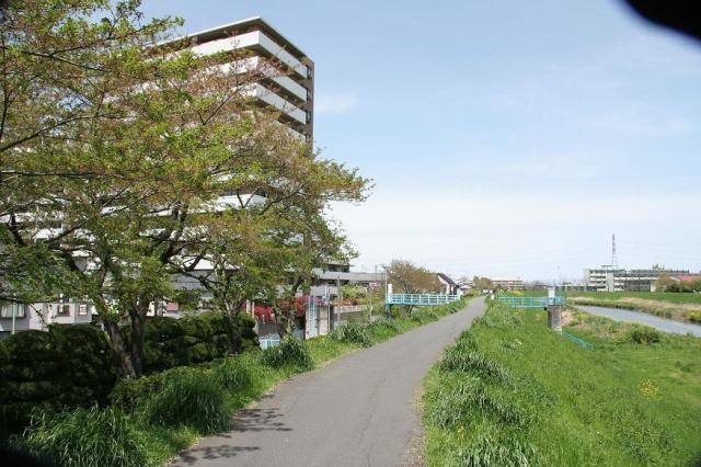 新河岸川サイクリングコース