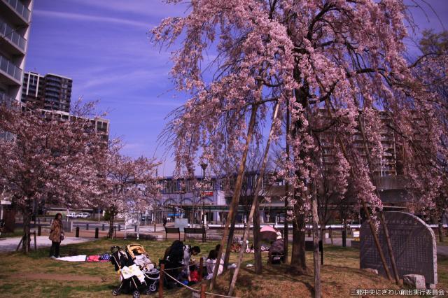 【2021年中止】三郷春まつり
