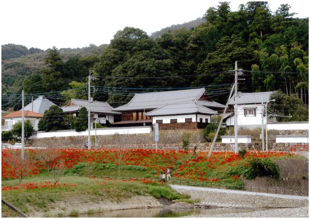 高麗郷古民家(旧新井家住宅)