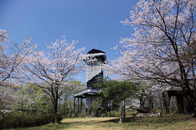 二ノ宮山展望塔