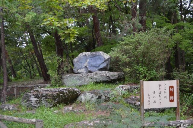 高浜虚子碑(養浩亭庭)