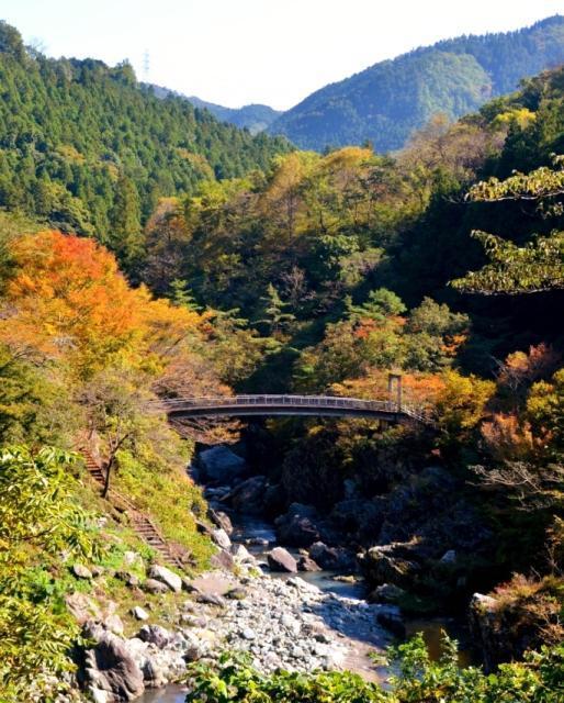 三波石峡(埼玉県神川町)