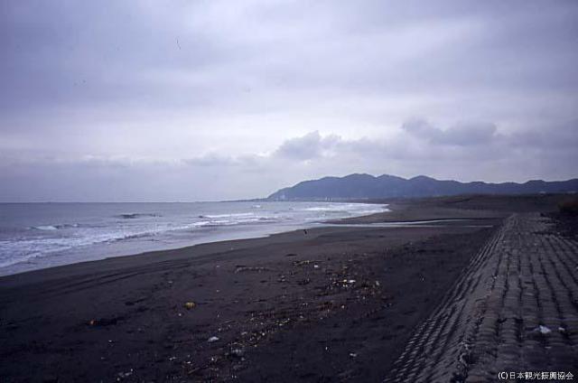 平砂浦海岸