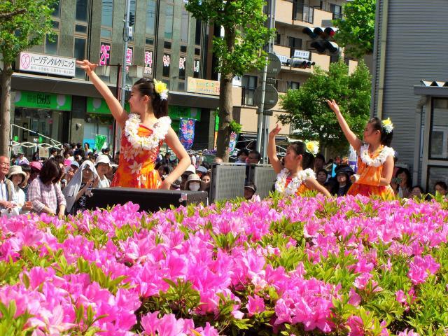 【2021年中止】八千代ゆりのき台つつじ祭り