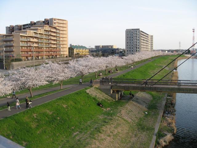 新川遊歩道