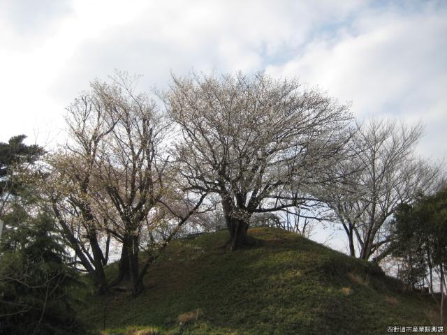 ルボン山(大土手山)