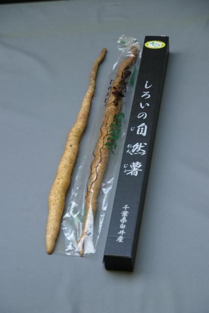 しろいの自然薯(白井市ふるさと産品)