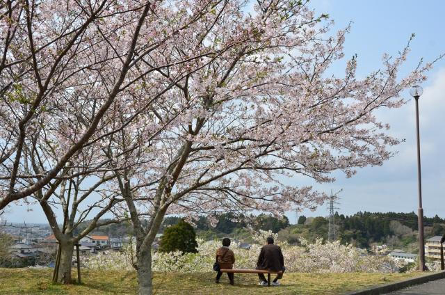 天神山公園(千葉県匝瑳市)