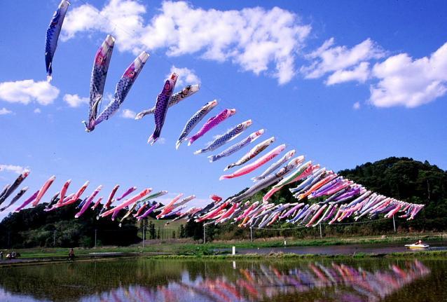 いきいき山田鯉のぼりまつり