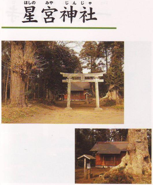 星宮神社(千葉県多古町)