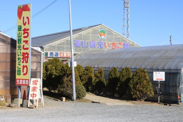 磯山観光いちご園