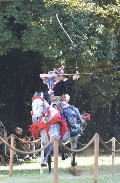Meiji Shrine Autumn Festival★13113ba2210116455