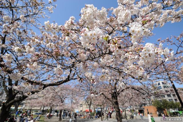 Nippori south park