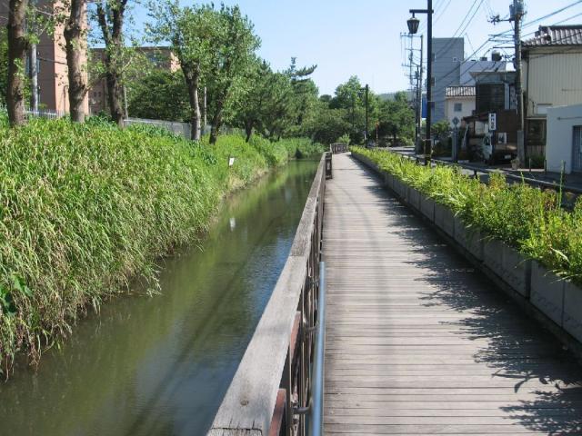 古隅田川緑道