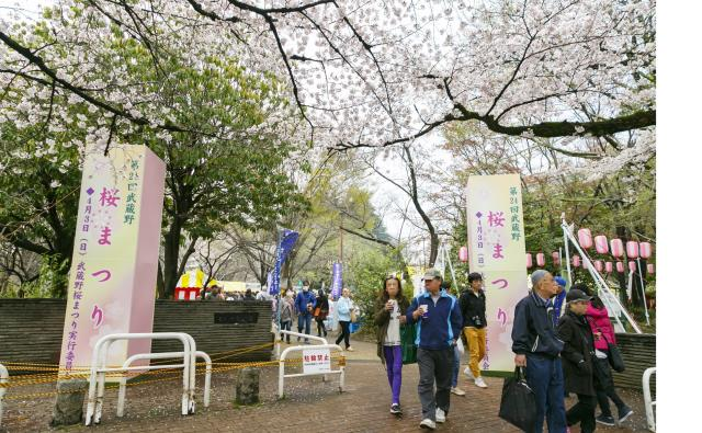 【中止】武蔵野桜まつり
