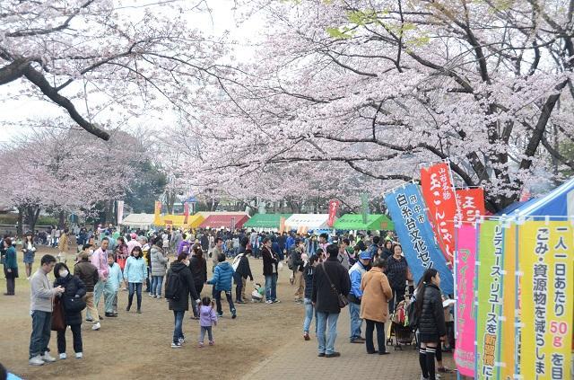 【規模縮小】府中市民桜まつり