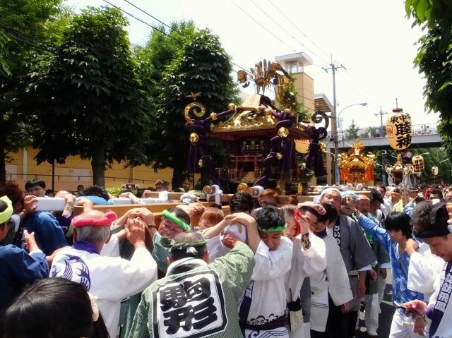 市内の神輿が一斉に渡御をする