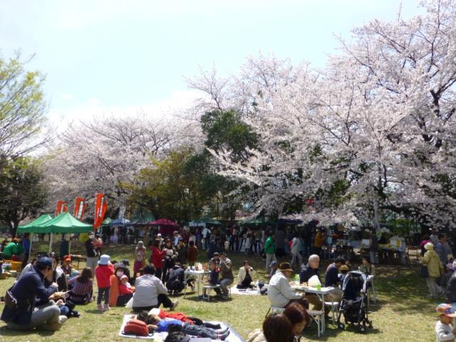 【2021年中止】小平グリーンロード花まつり