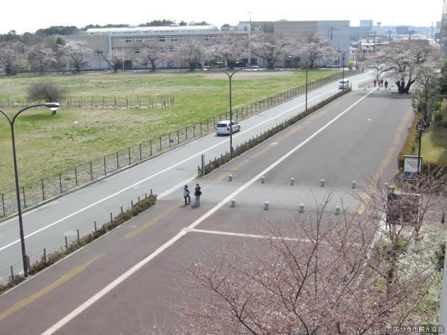 東山道武蔵路跡