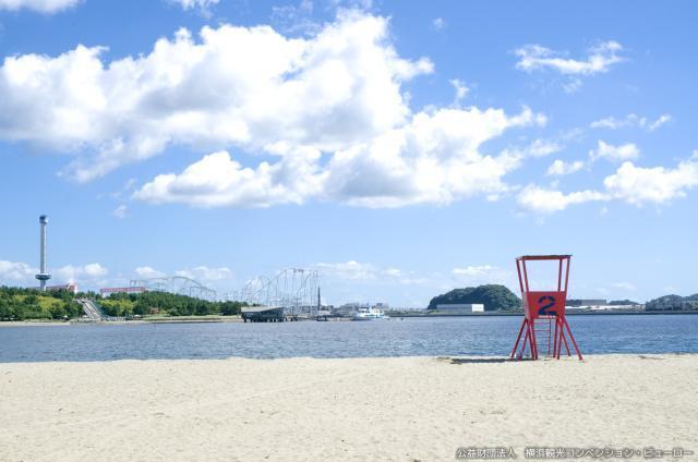 海の公園 海水浴場