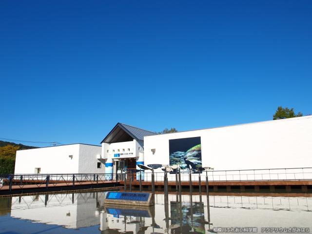 相模川接觸科學館水族館sagamihara