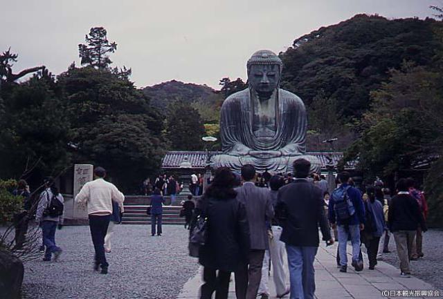 Kotoku (Great Buddha of Kamakura)★14204ag2130009759