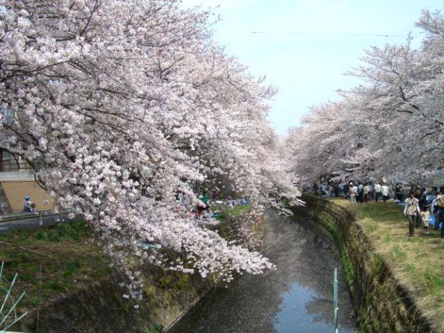 https://info.nihon-kankou.or.jp/dbmente/info/photo/L/14/213/14213ba2212059644001.jpg