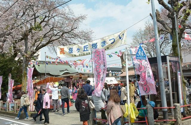 【2021年は開催中止】桜ヶ丘桜まつり