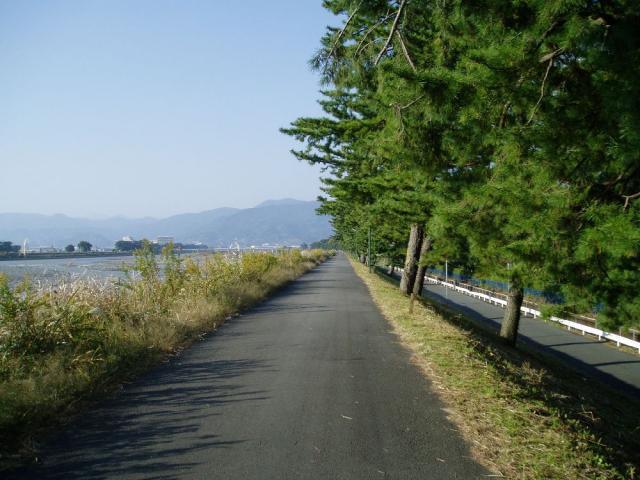 酒匂川・足柄大橋ハイキングコース