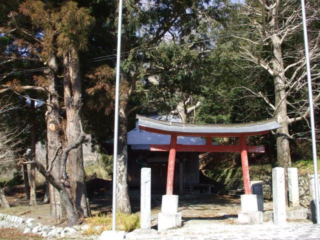 頼政神社のトチノキ